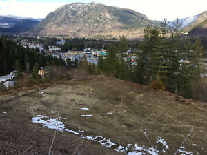 View Lot in Castlegar