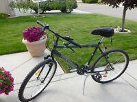 Mens/Boys 18 Speed Mountain Bike For Sale