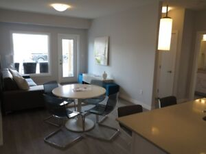 Modern + Spacious 2 bed/2bath - Ask about Fall rental incentives