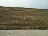 Walk_out Lot for Sale in West Lethbridge (40fX112f)