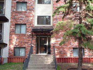 1 Bedroom Apartment - $500 for the first Month!