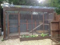 Walk in chicken run / aviary with LOADS of extras