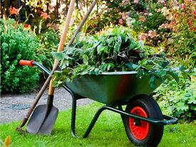 Black Fingers gardening services. Garden tidying, mowing, trimming, hedging and waste removal. Cheap