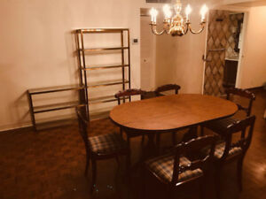 Near Mcgill, Drummond, Sherbrooke;  Roomate wanted :)