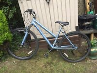 Olympus Stratton bike