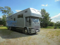 IVECO Ford Laurel Horsebox For Sale
