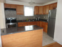 1+2 Rooms +Basement Apt Finch & Humber college only for Student