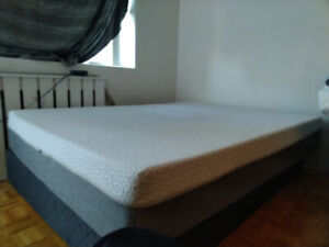Double(Full) Endy Mattress With Box Spring