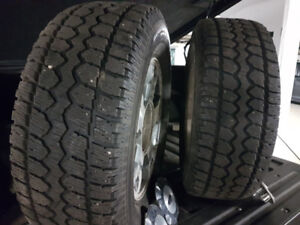 Motormaster All Weather Tire