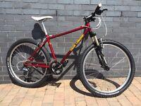 Rock Lobster Mountain Bike