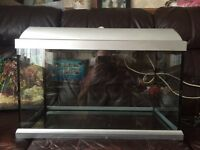 Tropical fish tank and all the equipment