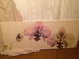 Large IKEA print, excellent condition. Still in stock selling for £25...