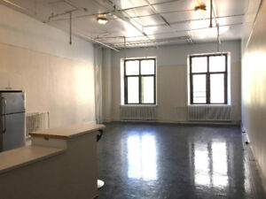 $1500 furnished rental / Location meublée (Old Montreal/Griffint