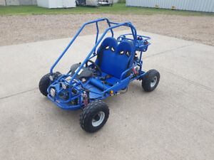 2007 Z-Star Kids Buggy/Cart