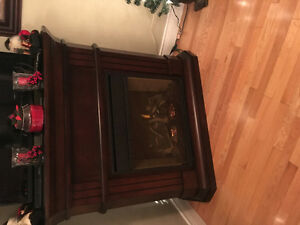 Electric fireplace insert and mantle surround in excellent condi
