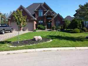 Lawn Care and grass cutting London Ontario image 3