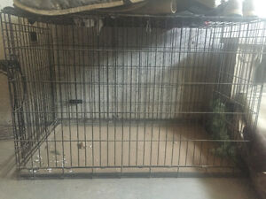 Kennel crate