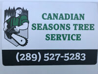 TREE & STUMP REMOVALS 289-527-5283 canadianseasonstree@gmail.com