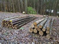 Cedar - Logs, Posts, Rails