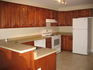 Spacious 2 Bedroom Apartment in Bible Hill - Utilities Included