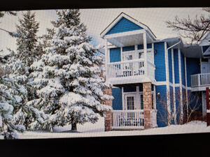Xmas Week Carriage Hills Vacation Resort for 8