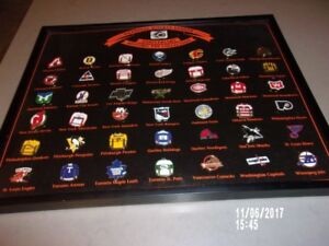 nhl pin collection