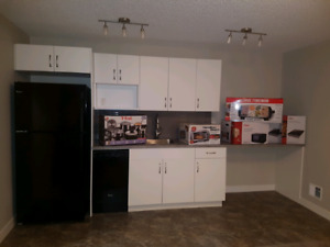 Brand New Basement Suite 930 East Gate NW