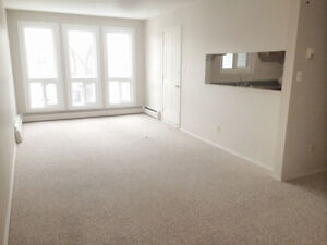 Large 1 BDR Suite! Minutes from downtown.