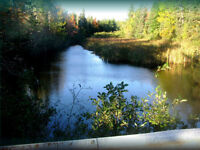 10 Acre Waterfront Hopefield Cottage Lot