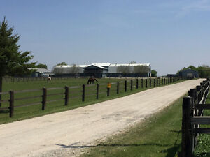 Are you looking for a BOARDING/RIDING HORSE FARM in Brant???