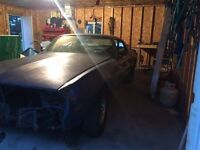 Looking for parts for a 1981 firebird