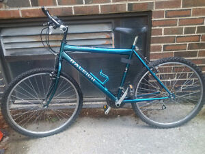 5 speed Men's Bicycle, Raleigh