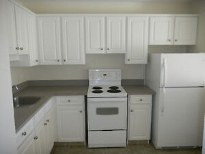 Downtown Regina - 1BR Suite Move-In Ready