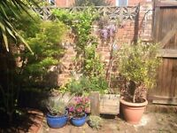 Double room, Monday to Friday lodging, central Exeter