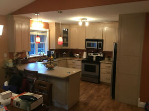 Kitchen Cabinets, appliances and sinks