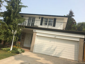 NICE TWO BED ROOM BASEMENT APARTMENT IN NORTH ETOBICOKE