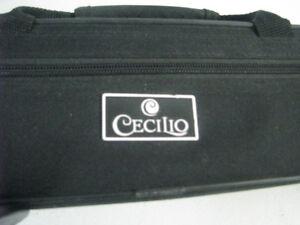 Cecilio flute case