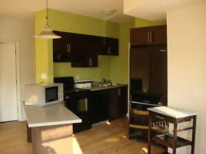 LIVE MINUTES FROM LAURIER WITH YOUR FRIENDS! Kitchener / Waterloo Kitchener Area image 1