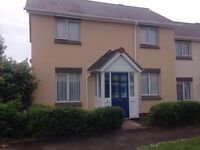 2/3 bed house wanted in Plymouth