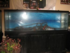 I have a 135 gal fish tank and glass top  $150