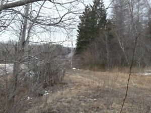 Great Farmland Lots ~  Lyons Brook Areas  2 Acres up to 28 Acres