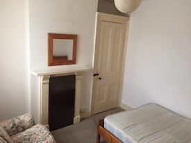 Double Room to let suit polish female nr town