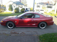 Mustang - Priced to Sell - 3000 obo