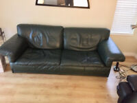 Free dark green Scandinavia Design leather couch