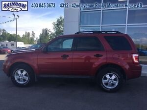 2009 Ford Escape XLT  - Low Mileage