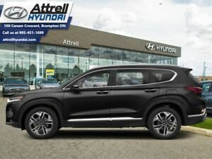 2020 Hyundai Santa Fe 2.0T Luxury AWD  - Sunroof - $248 B/W