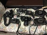 Camera collection $50 for your choice of camera or lens