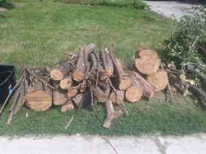 Free Dead Cut Up Firewood (Orton Park/Lawrence)