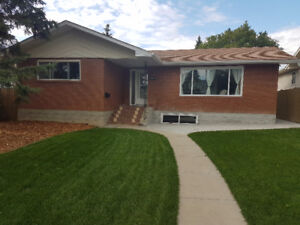 3 Bedroom Basement in Pleasantview