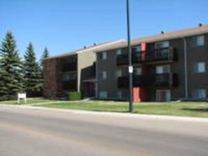Excellent One Bedroom Condo in South Red Deer (Bower)